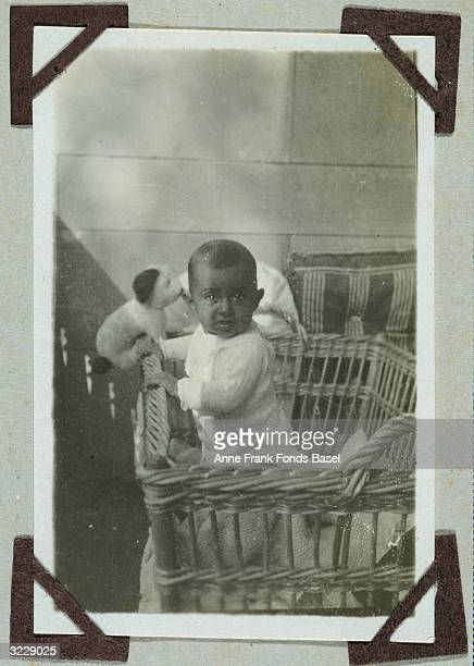Anne Frank's older sister Margot Frank playing with a stuffed toy dog in her playpen on the balcony of her home in a snapshot from her photo album...