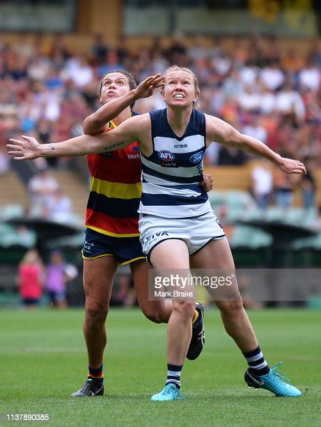 Anne Hatchard of the Adelaide Crows rucks against Kate Darby of the Cats during the AFLW Preliminary Final match between the Adelaide Crows and thew...