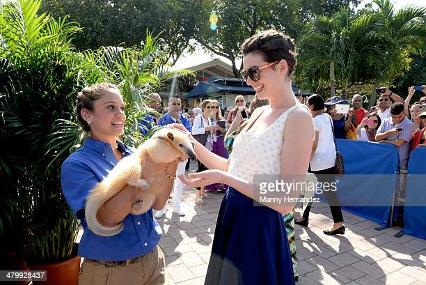 Anne Hathaway attends Miami Walk of Fame Inauguration at Bayside at Bayside Marketplace on March 21 2014 in Miami Florida
