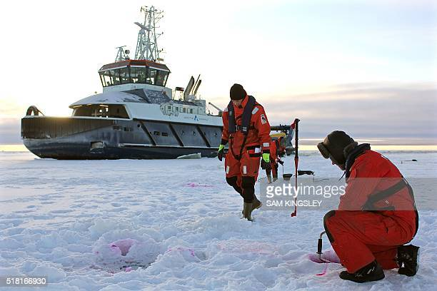 Anne KAURANEN Marine experts in Tornio northern Finland drill holes on February 5 2016 in the seaice and inject dye into the water to study how it...