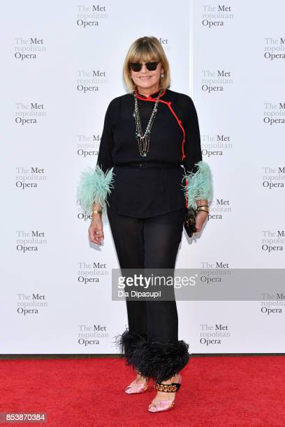 Anne McNally attends the 2017 Metropolitan Opera Opening Night at The Metropolitan Opera House on September 25 2017 in New York City