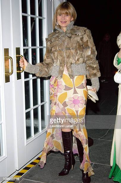 Anne McNally during Christian Dior's Winter Fete At The Frick at The Frick in New York New York United States