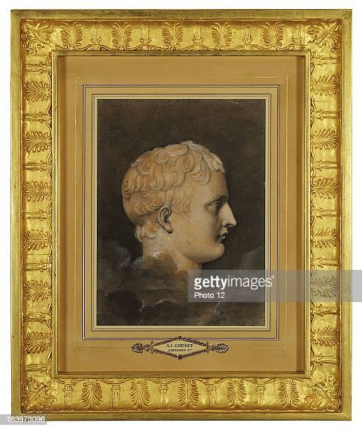 AnneLouis Girodet de Roucy known as GirodetTriosonFrench schoolProfile portrait of Napoleon represented as a Roman emperorBrown ink on colour wash...