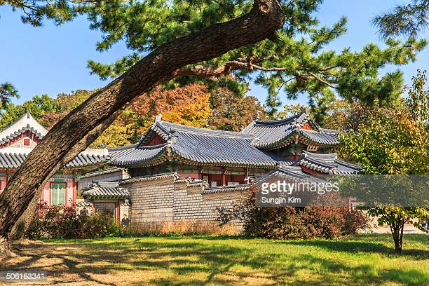CONTENT] Annex building of Changdeokgung Palace with autumn foliage at behind Seoul 2013