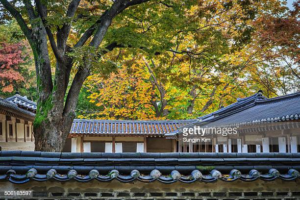 CONTENT] Annex building with autumn foliage at Secret Garden of Changdeokgung Palace looked over a wall Seoul 2013