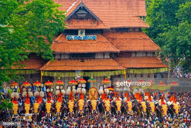annual puram festival in thrissur - kerala elephants stock pictures, royalty-free photos & images