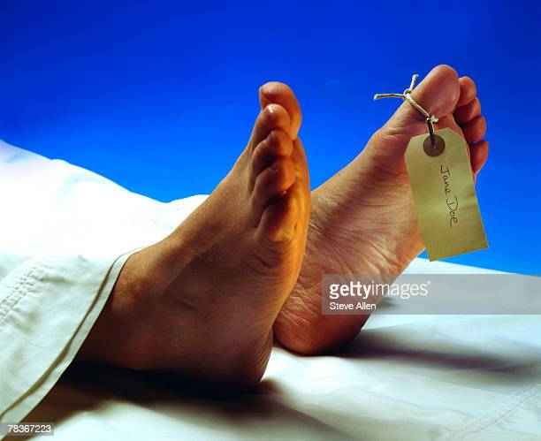 anonymous dead body - morgue woman stock pictures, royalty-free photos & images
