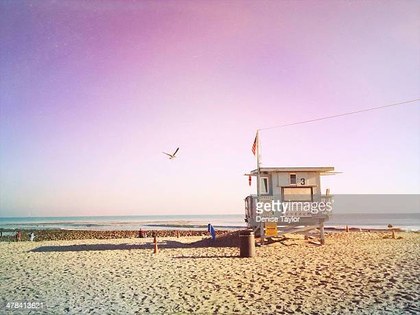 another beach day dream - malibu beach stock pictures, royalty-free photos & images