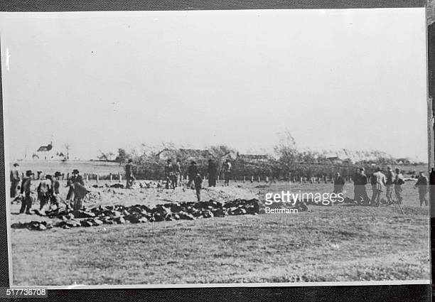 Another German victory Victims of a firing squad being readied for mass burial in a common grave is shown here