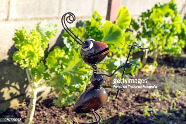 Ant in the garden