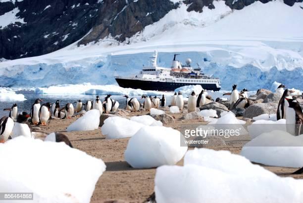 Antarctic Expedition