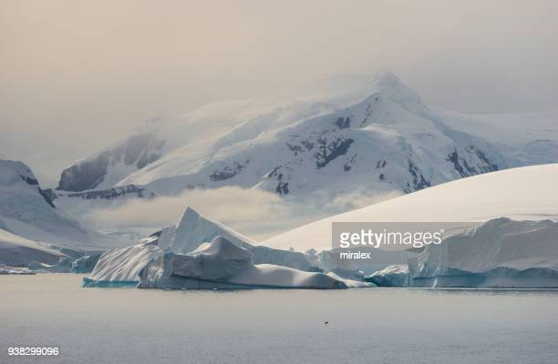Antarctic Landscape with Icebergs and Mountains