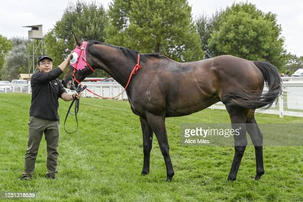 Antarctic Ocean after winning the Terragen Biotech BM58 Handicap at Terang Racecourse on February 22, 2021 in Terang, Australia.
