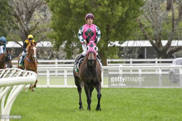 Antarctic Ocean ridden by Jarrod Fry returns to scale after winning the Terragen Biotech BM58 Handicap at Terang Racecourse on February 22, 2021 in...