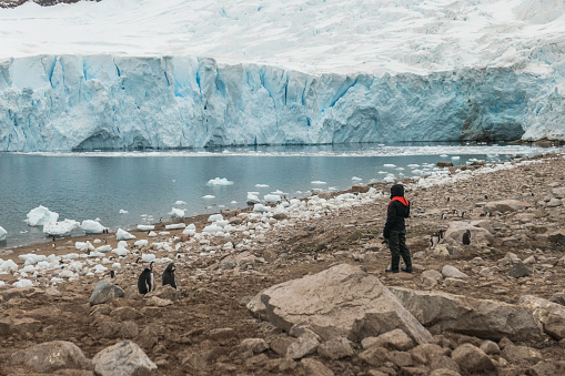 Antarctic Tourist looking at the Papua Penguins in Neko Harbour - gettyimageskorea