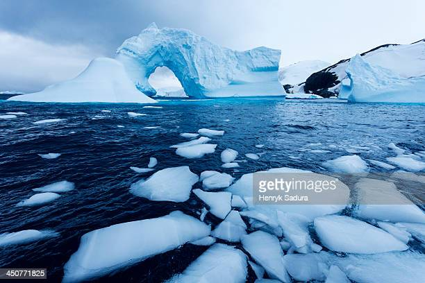 antarctica, antarctic peninsula, ice floe floating on water - ijsschots stockfoto's en -beelden