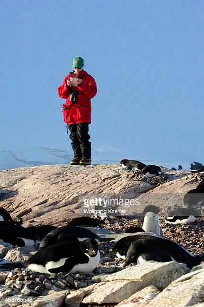 Antarctica Antarctic Peninsula Petermann Island Adelie Penguin Colony Researcher
