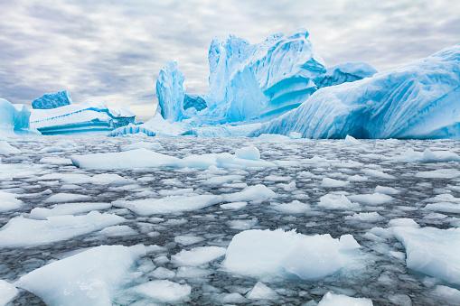 Antarctica beautiful landscape, blue icebergs 1018131148