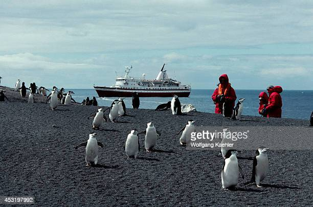 Antarctica, Deception Isl. Ms Society Explorer, Chinstrap Penguins And Tourists.