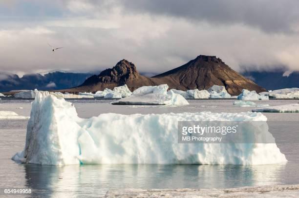 antarctica iceberg - 南極海 ストックフォトと画像
