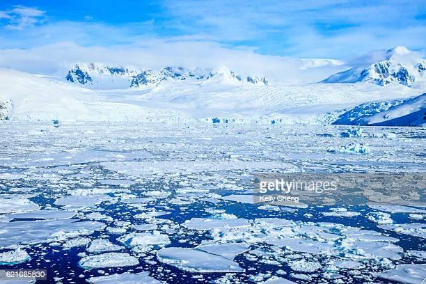 antarctica peninsula, pleneau island - antarctica stock pictures, royalty-free photos & images