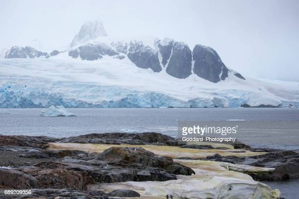 Antarctica: Petermann Island
