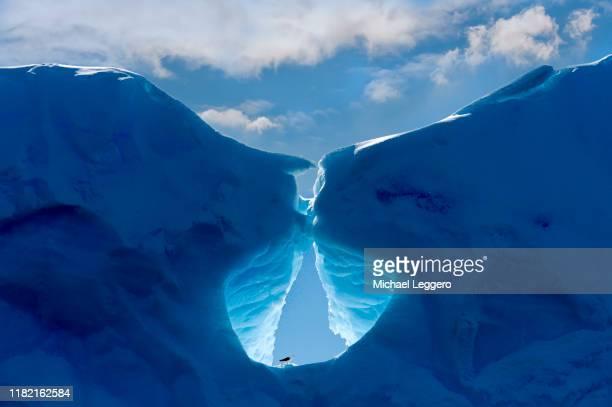 antarctica - 南極 ストックフォトと画像