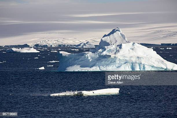 antarctica - weddell sea stock photos and pictures