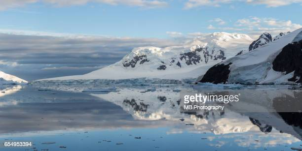 Antarctica reflections