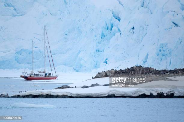 Antarctica sailboat explorers gentoo penguins Wiencke Island mountain glaciers Port Lockroy station