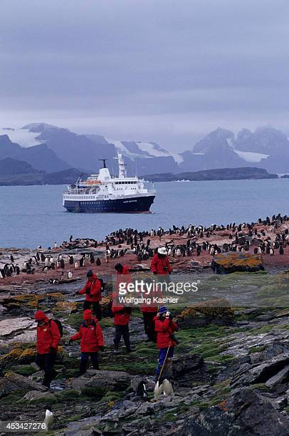 Antarctica, South Orkney Islands, Shingle Cove, Ms Clipper Adventurer, Adelie Penguins, Tourists.