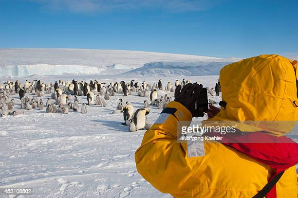Antarctica, Weddell Sea, Snow Hill Island, Tourists At Emperor Penguin Colony Aptenodytes forsteri.