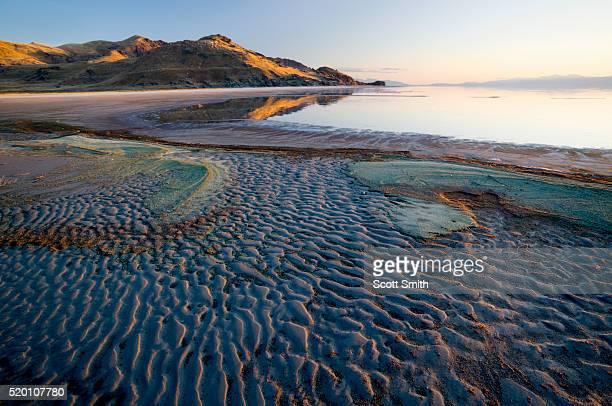 antelope island state park, utah - great salt lake stock pictures, royalty-free photos & images