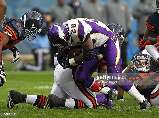 Anthony Adams of the Chicago Bears brings down Adrian Peterson of the Minnesota Vikings at Soldier Field on November 14 2010 in Chicago Illinois The...