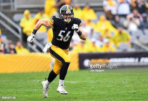 Anthony Chickillo of the Pittsburgh Steelers in action during the game against the Cincinnati Bengals at Heinz Field on September 18 2016 in...