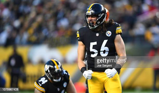 Anthony Chickillo of the Pittsburgh Steelers reacts after a sack in the first quarter during the game against the Cincinnati Bengals at Heinz Field...