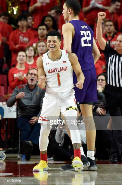 Anthony Cowan Jr #1 of the Maryland Terrapins celebrates during the game against the Northwestern Wildcats at Xfinity Center on February 18 2020 in...