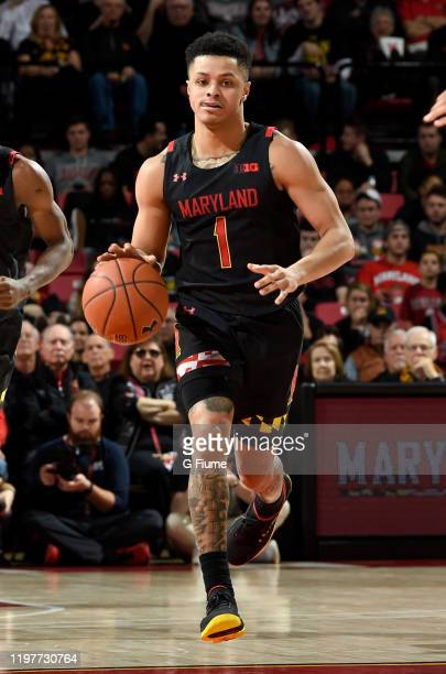 Anthony Cowan Jr #1 of the Maryland Terrapins handles the ball against the Indiana Hoosiers at Xfinity Center on January 4 2020 in College Park...
