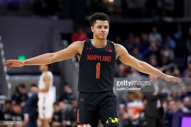 Anthony Cowan Jr #1 of the Maryland Terrapins in action in the game against the Northwestern Wildcats at WelshRyan Arena on January 21 2020 in...