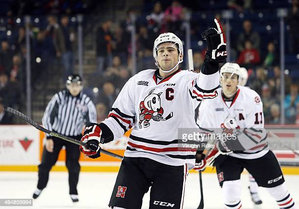 Anthony DiFruscia of the Niagara IceDogs celebrates a goal during an OHL game against the Mississauga Steelheads at the Meridian Centre on October 29...
