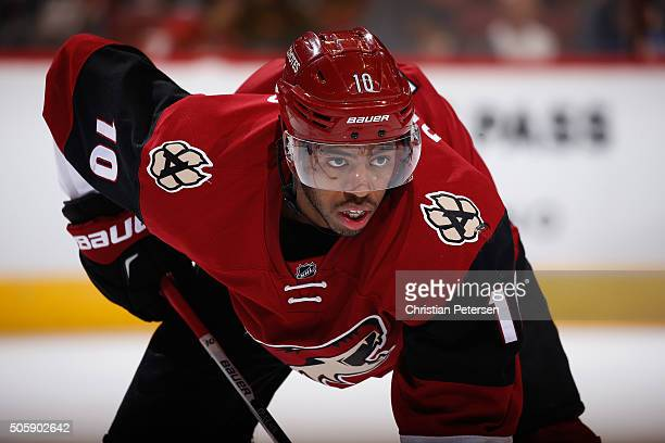 Anthony Duclair of the Arizona Coyotes during the NHL game against the Buffalo Sabres at Gila River Arena on January 18 2016 in Glendale Arizona The...