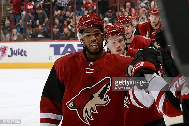 Anthony Duclair of the Arizona Coyotes is congratulated by teammates after his second period goal against the Calgary Flames at Gila River Arena on...