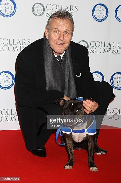 Anthony Head attends the Collars Coats Gala Ball at Battersea Evolution on November 8 2012 in London England