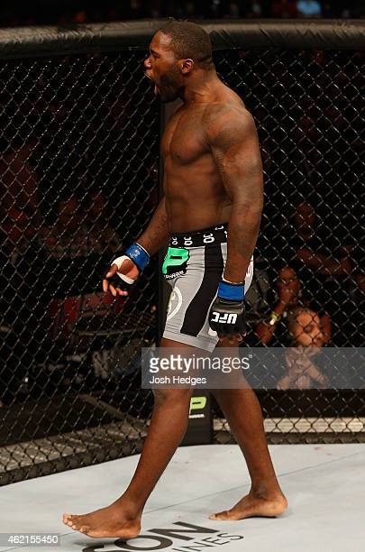 Anthony Johnson of the United States celebrates after his TKO victory over Alexander Gustafsson of Sweden in their light heavyweight bout during the...