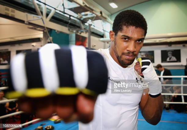 Anthony Joshua poses as he takes part in a training session during the Anthony Joshua Media Day at English Institute of Sport on September 12 2018 in...