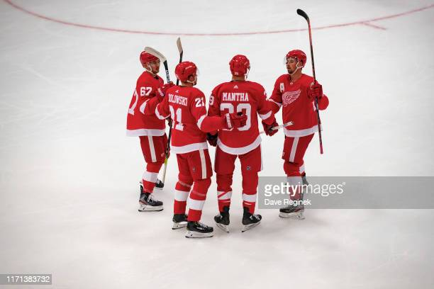 Anthony Mantha of the Detroit Red Wings celebrates a first period goal with teammates against the St. Louis Blues during a pre-season Kraft...