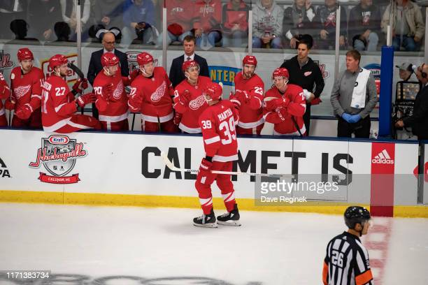 Anthony Mantha of the Detroit Red Wings celebrates a first period goal with teammates on the bench against the St. Louis Blues during a pre-season...