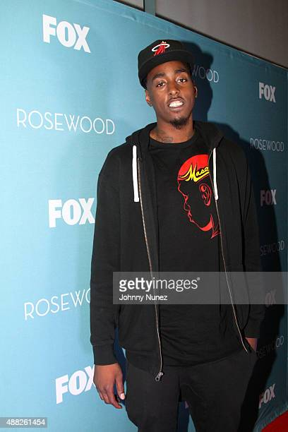 """Anthony Mason Jr. Attends the """"Rosewood"""" Series 1 Premiere screening at The Schomburg Center for Research in Black Culture on September 14, 2015 in..."""