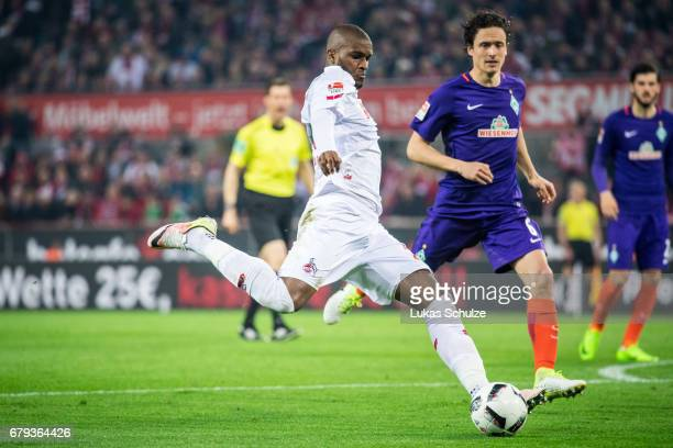 Anthony Modeste of Koeln is challenged by Thomas Delaney of Bremen and scores his teams fourth goal during the Bundesliga match between 1 FC Koeln...