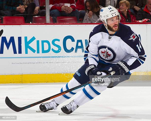 Anthony Peluso of the Winnipeg Jets follows the play during a NHL game against the Detroit Red Wings on February 14 2015 at Joe Louis Arena in...